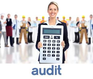 icone-audit